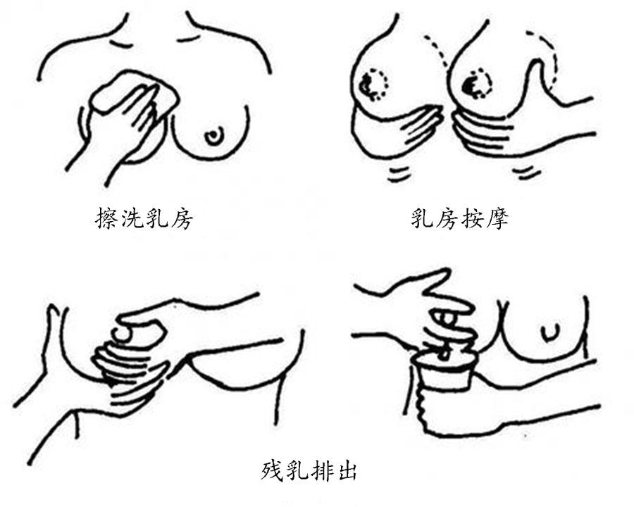 月子乳房痛怎么回事 第4张-备孕-孕期检查-孕产妇食谱-胎教育儿